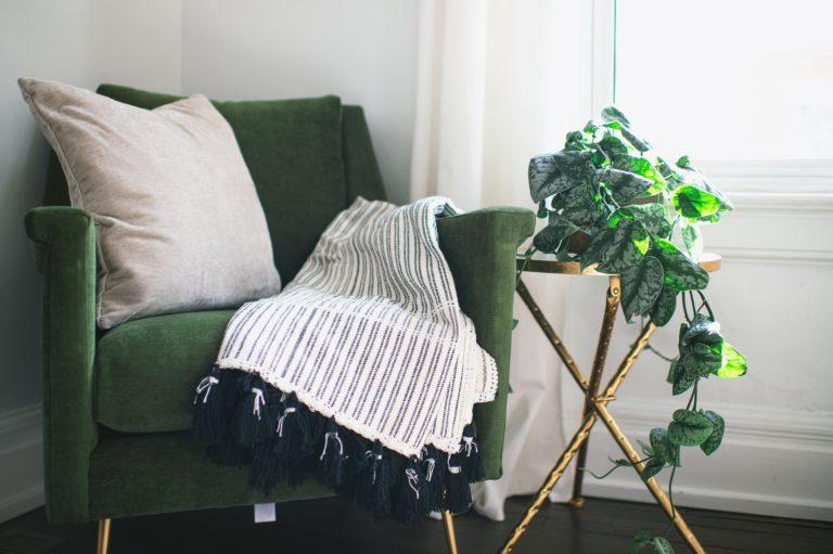 Biljke za spavaću sobu – 10 najboljih